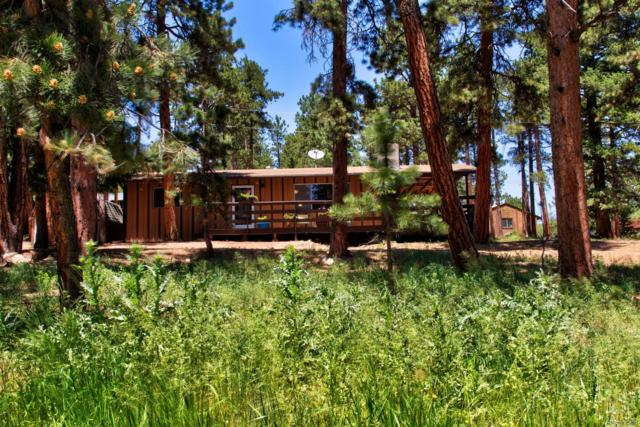 26695 Bradley Street, Conifer, CO 80433 (#5095192) :: Structure CO Group