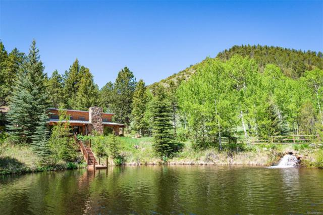 859 Mill Creek Road, Dumont, CO 80436 (#5096259) :: The Galo Garrido Group