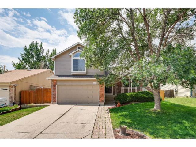 6171 S Quail Way, Littleton, CO 80127 (MLS #5097078) :: 8z Real Estate