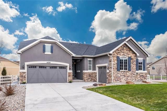 6058 Clover Ridge Circle, Castle Rock, CO 80104 (MLS #5100823) :: 8z Real Estate