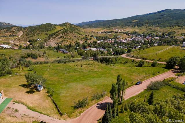 113 S Arthur Avenue, Oak Creek, CO 80467 (#5104219) :: The Brokerage Group