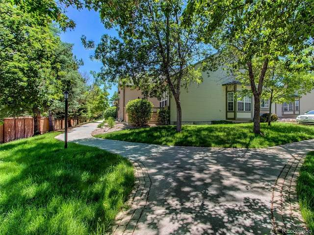 5010 Walking Horse Point, Colorado Springs, CO 80923 (#5109828) :: West + Main Homes