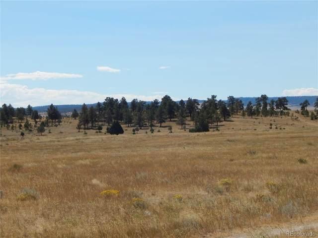 001 County Road 102, Elbert, CO 80106 (#5110135) :: The DeGrood Team