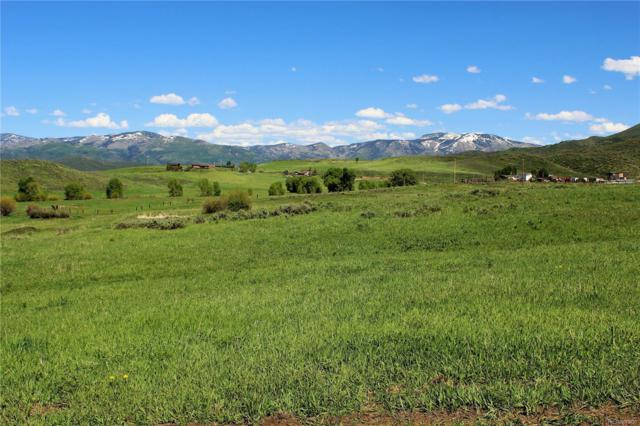 0 Cc Way, Steamboat Springs, CO 80487 (#5111511) :: Structure CO Group