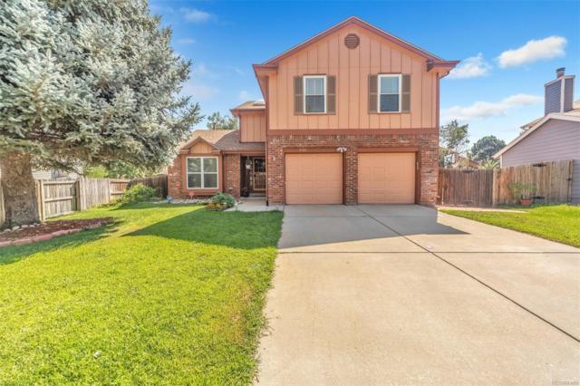 4540 Ensenada Street, Denver, CO 80249 (#5113576) :: The Peak Properties Group