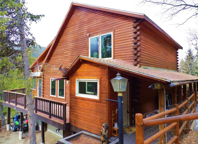 54 Old Little Bear Creek Road, Idaho Springs, CO 80452 (#5114792) :: The DeGrood Team