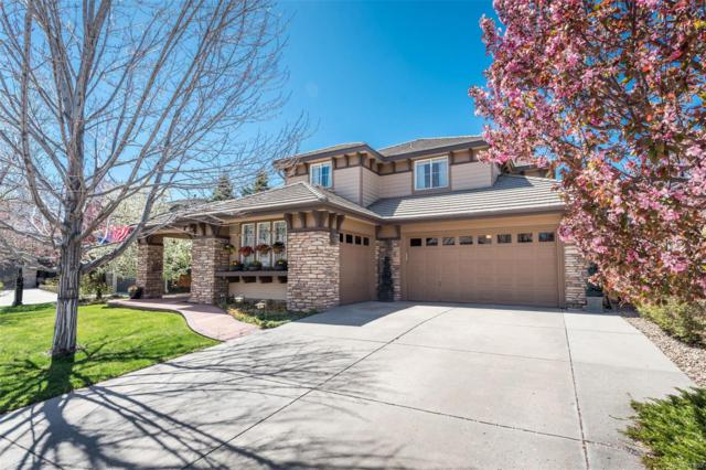 8967 Hunters Way, Highlands Ranch, CO 80129 (#5116874) :: Wisdom Real Estate
