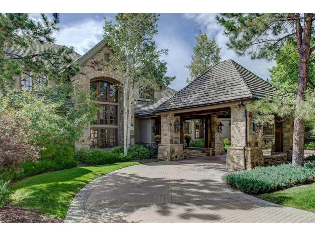 7 Eagle Pointe Lane, Castle Rock, CO 80108 (#5117283) :: Colorado Team Real Estate