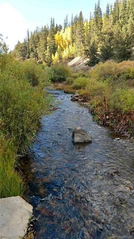 Forest Service Rd 406, Como, CO 80432 (#5122748) :: Wisdom Real Estate