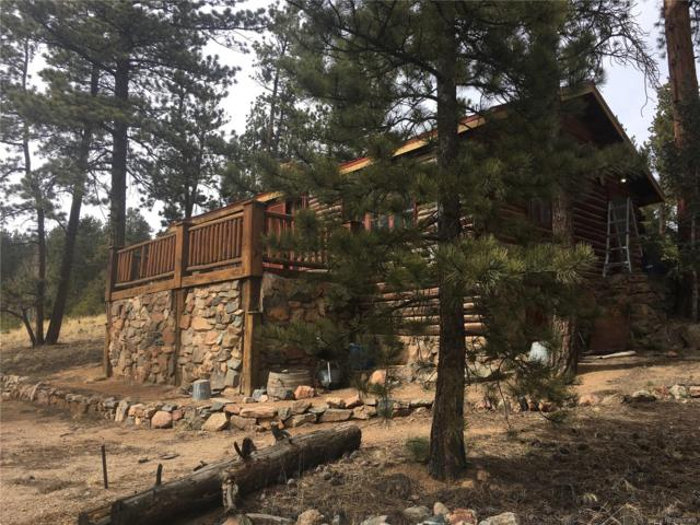 61 Shelton Drive, Bailey, CO 80421 (#5123812) :: Wisdom Real Estate