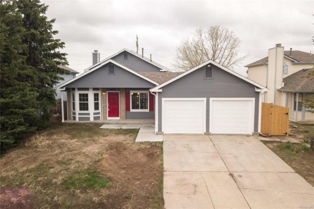 4345 Ramblewood Drive, Colorado Springs, CO 80920 (#5129250) :: Venterra Real Estate LLC