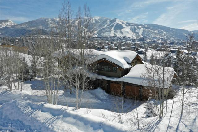 827 Anglers Court, Steamboat Springs, CO 80487 (#5131985) :: The Dixon Group