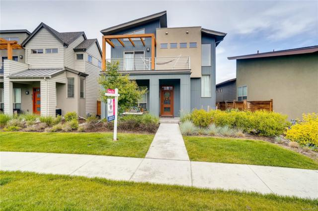 8785 E 55th Avenue, Denver, CO 80238 (#5137330) :: The Heyl Group at Keller Williams