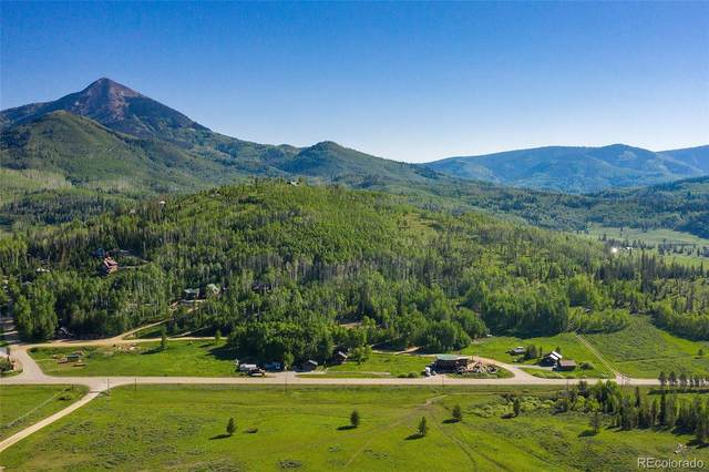 61030 County Road 129, Clark, CO 80428 (#5143616) :: Bring Home Denver with Keller Williams Downtown Realty LLC