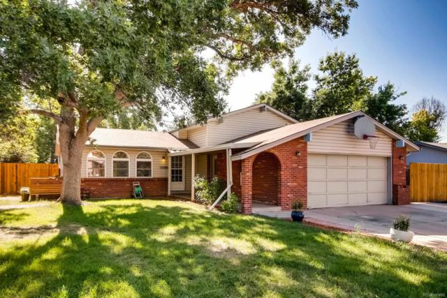 8432 Gray Court, Arvada, CO 80003 (#5144088) :: My Home Team