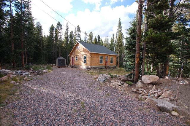 341 Upper Forest Road, Idaho Springs, CO 80452 (#5146797) :: The DeGrood Team
