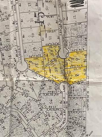 57 Flathead Lane, Woodland Park, CO 80863 (MLS #5147661) :: Kittle Real Estate