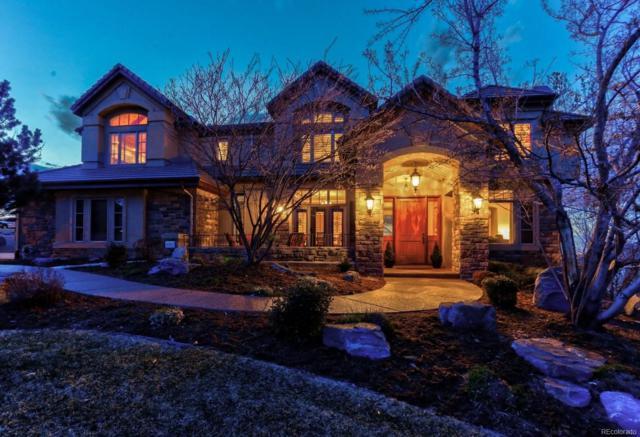 8683 Sawgrass Drive, Lone Tree, CO 80124 (#5149283) :: Colorado Team Real Estate