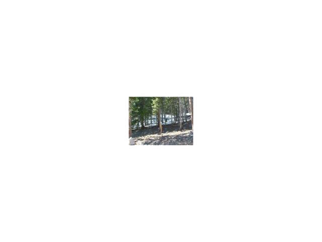 LOT 373 Steuart Road, Idaho Springs, CO 80452 (MLS #5150092) :: 8z Real Estate