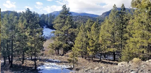 761 Escondida Drive, South Fork, CO 81154 (#5150430) :: James Crocker Team