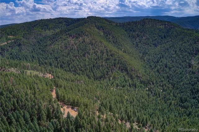 13125 Andiron Way, Larkspur, CO 80118 (#5151992) :: Symbio Denver