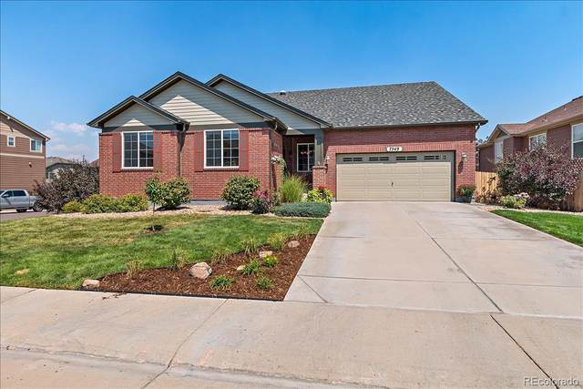7549 E 122nd Place, Thornton, CO 80602 (#5155300) :: The Dixon Group