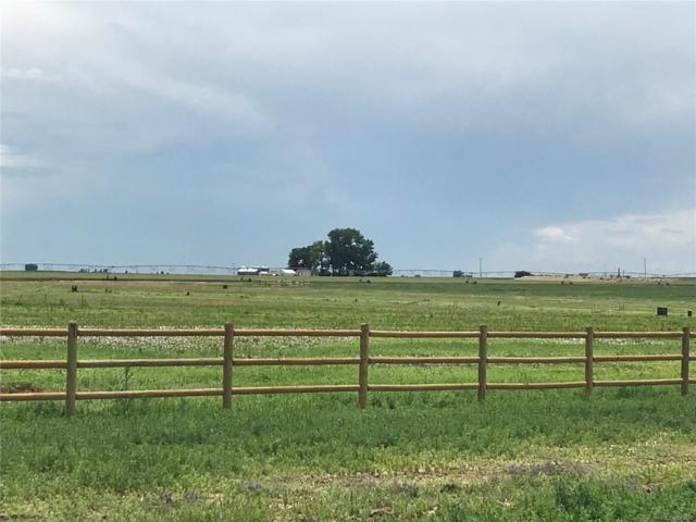 9200 Meadow Farms Drive, Milliken, CO 80543 (#5155458) :: James Crocker Team