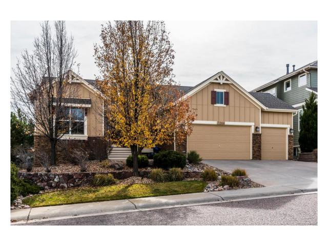 7266 Winter Berry Lane, Castle Pines, CO 80108 (#5158053) :: The Sold By Simmons Team