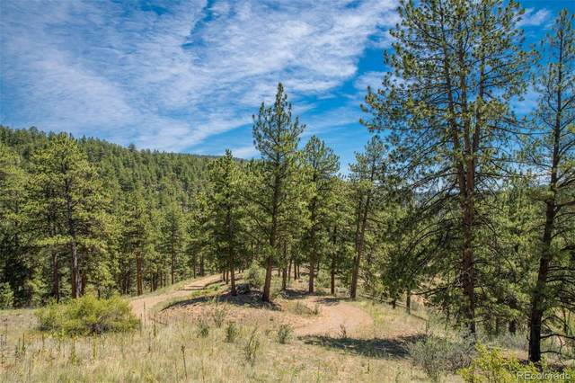 14433 Lot 8 Elk Creek Road, Pine, CO 80470 (#5159289) :: Kimberly Austin Properties