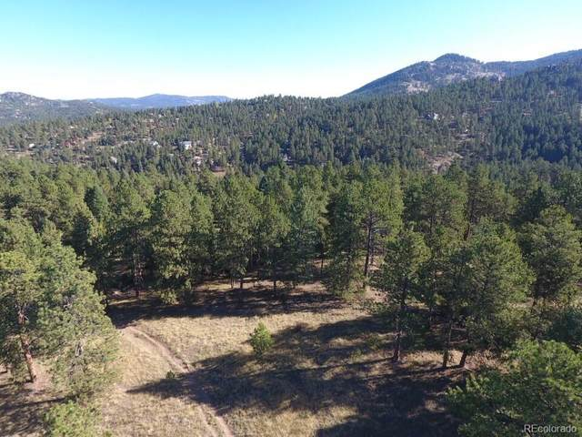28268 Lone Elk Trail, Evergreen, CO 80439 (#5162639) :: The DeGrood Team