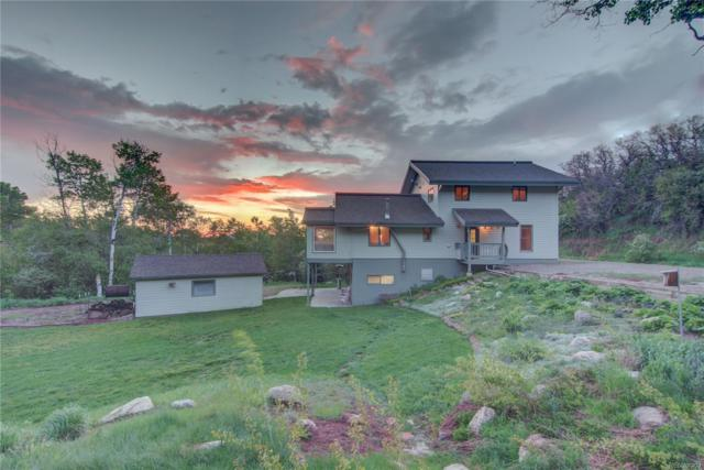 28295 Valley View Lane, Steamboat Springs, CO 80487 (#5168616) :: Berkshire Hathaway Elevated Living Real Estate