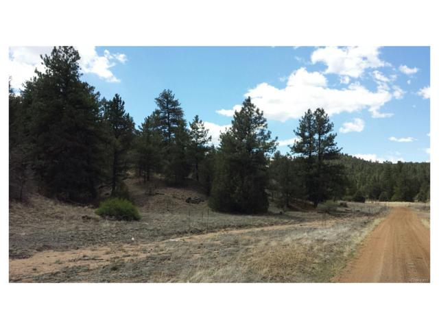 176 Arnold, Cotopaxi, CO 81223 (MLS #5175924) :: 8z Real Estate