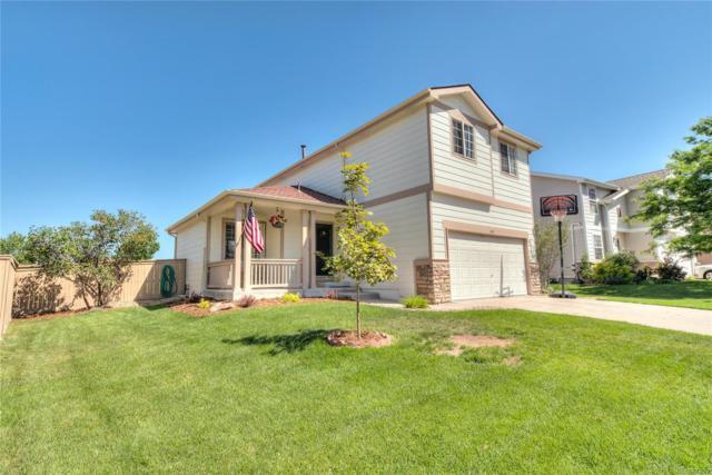 6342 Millbridge Avenue, Castle Rock, CO 80104 (#5176623) :: Mile High Luxury Real Estate