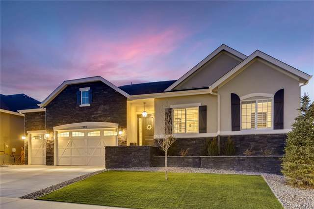 7205 Greenwater Circle, Castle Rock, CO 80108 (#5178301) :: Finch & Gable Real Estate Co.
