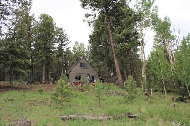 3911 Campfire Road, Hartsel, CO 80449 (#5180193) :: The Griffith Home Team