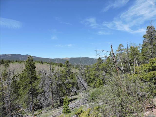 402 Powers Road, Fort Garland, CO 81133 (#5180917) :: Wisdom Real Estate