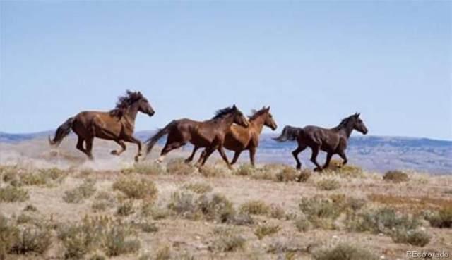 Browing Hills, Mancos, CO 81151 (#5181612) :: iHomes Colorado