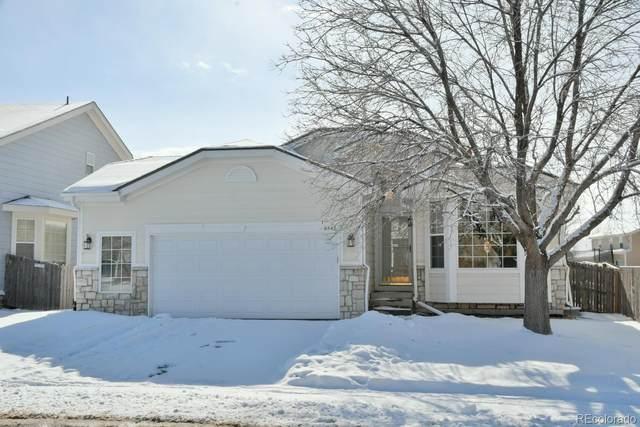 6442 Old Divide Trail, Parker, CO 80134 (#5190429) :: Wisdom Real Estate