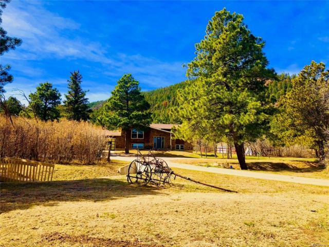 176 Rockridge Road, Palmer Lake, CO 80133 (#5191631) :: Venterra Real Estate LLC