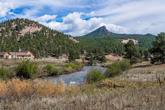 28110 S River Road, Pine, CO 80470 (#5192718) :: Bring Home Denver