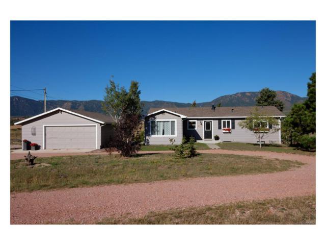 16050 Old Denver Road, Monument, CO 80132 (MLS #5193023) :: 8z Real Estate