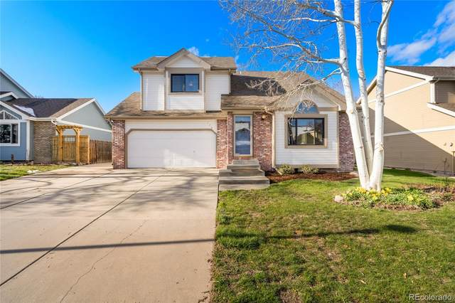 736 Blue Mountain Drive, Fort Collins, CO 80526 (MLS #5193130) :: 8z Real Estate