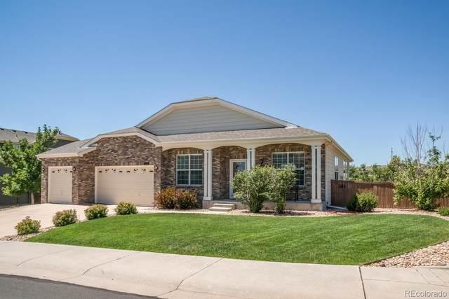 546 Cinnabar Lane, Castle Rock, CO 80108 (MLS #5199376) :: 8z Real Estate