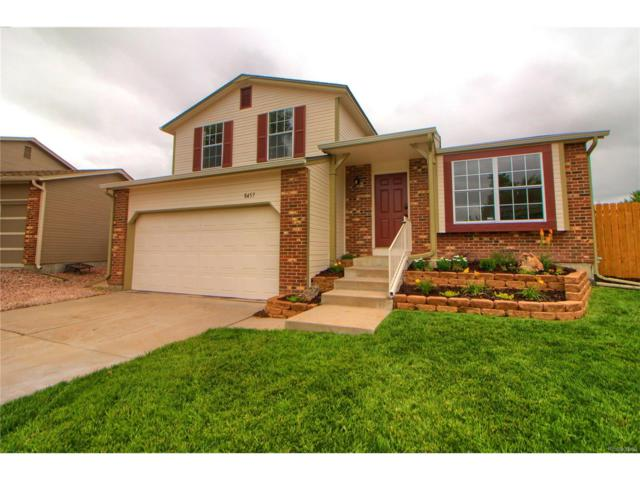 8457 Gamble Oak Court, Parker, CO 80134 (#5200921) :: The Griffith Home Team