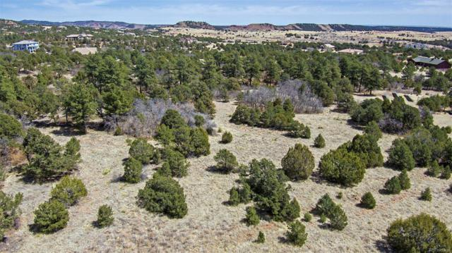 15905 Cala Rojo Drive, Colorado Springs, CO 80926 (#5206643) :: The Peak Properties Group