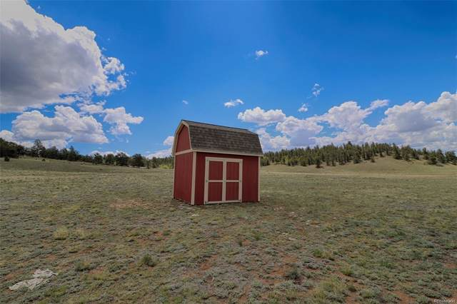 163 Yellowstone Road, Hartsel, CO 80449 (#5206842) :: The DeGrood Team