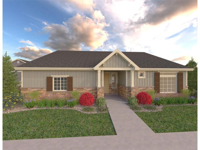 5401 Himalaya Road, Denver, CO 80249 (#5207070) :: Ford and Associates