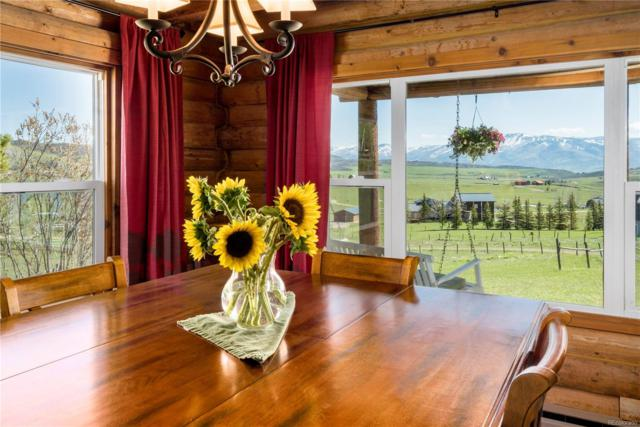 30955 Whitecotton Court, Steamboat Springs, CO 80487 (MLS #5207580) :: 8z Real Estate