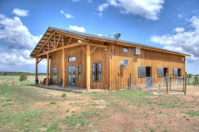 2001 Cr 342, Walsenburg, CO 81089 (#5209953) :: Bring Home Denver with Keller Williams Downtown Realty LLC