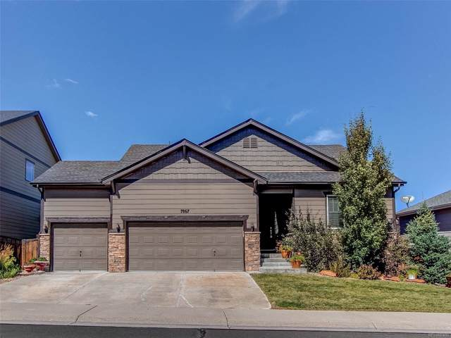 7867 Grady Circle, Castle Rock, CO 80108 (MLS #5210670) :: Kittle Real Estate
